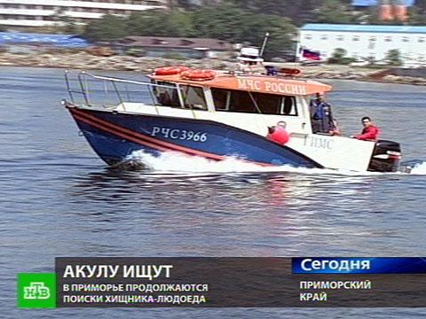 Поиски nobr акулы-людоеда/nobr на юге Приморья.  Репортаж Игоря Сорокина...