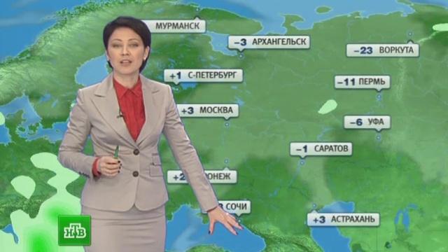 Погода на кашарский район