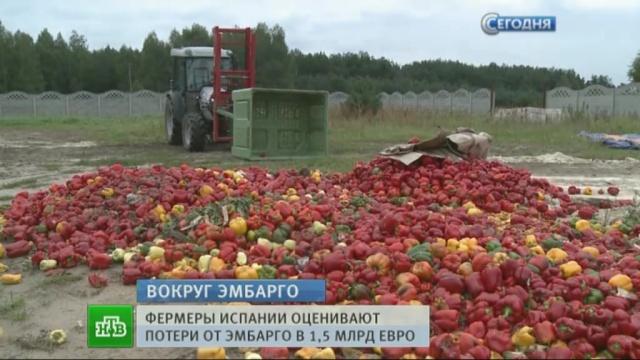 В Испании бунтующие фермеры уничтожают свои урожаи и символику ЕС