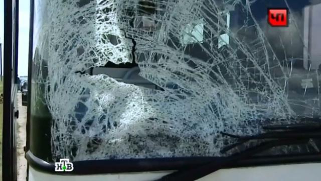 Под Петербургом разбились три легковушки и автобус, 11 пострадавших