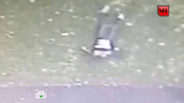 Камера наблюдения сняла самоубийство студента МГУ