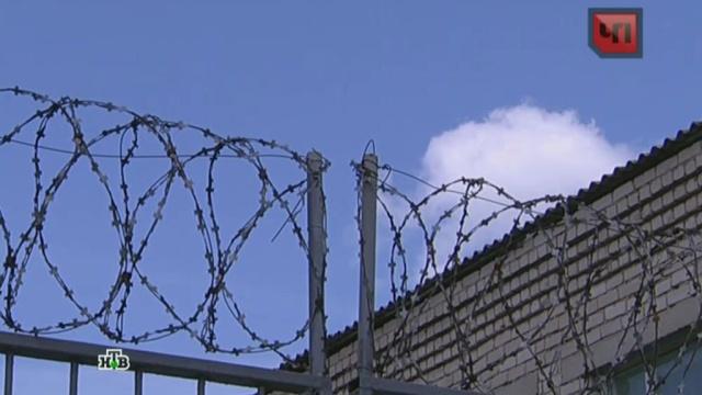 Ульяновский суд отправил в тюрьму трех продавцов младенца