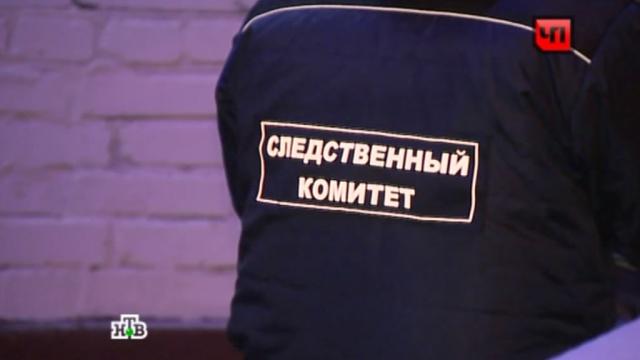 Петербургские сыщики допросят свидетелей нападения на 78-летнюю узницу концлагеря