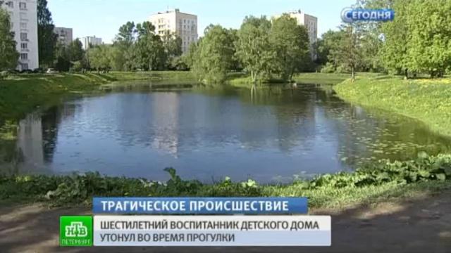Драма на прогулке: петербургский СК разбирается, почему никто не помог тонущему сироте