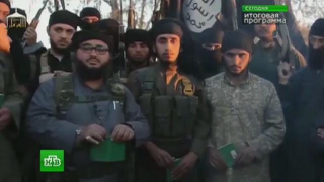Агрессивная пропаганда заманивает студентов российских вузов в силки ИГИЛ