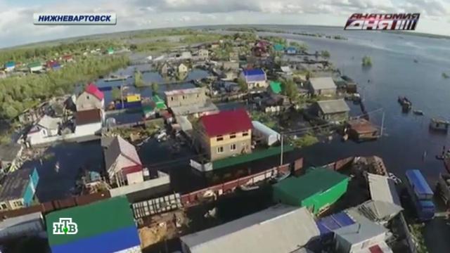 Затопленные жители ХМАО готовят обращение к президенту