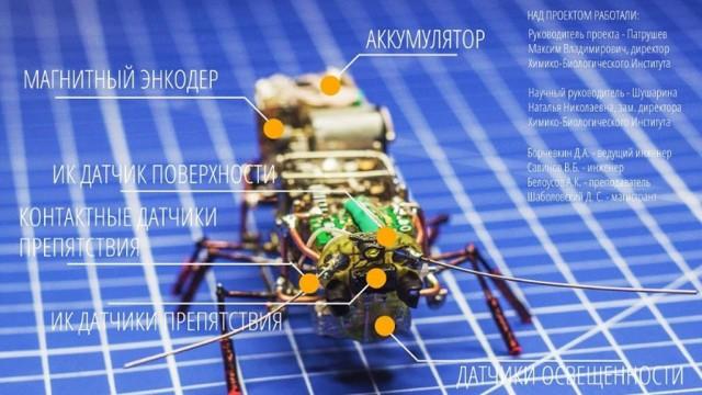 http://www.ntv.ru/home/news/20150924/tar.jpg