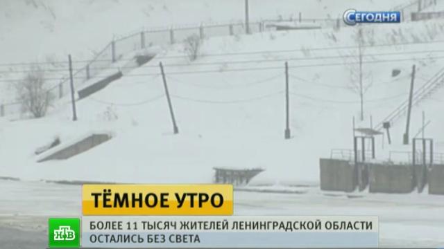 какой сейчас деньком ветер в ленинградской области