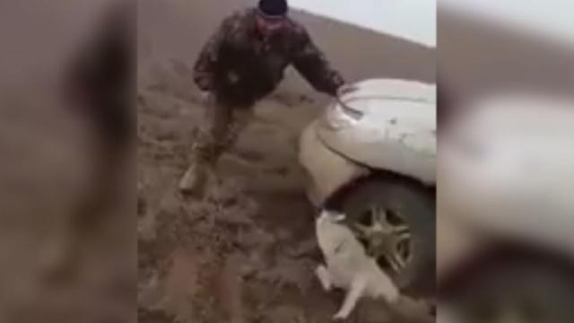 Новости одесской области саратский район