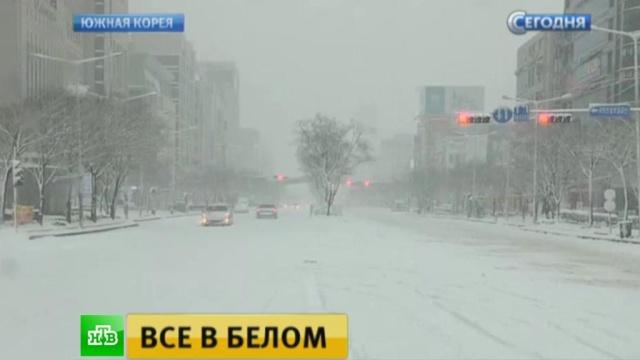 В Южной Корее переживают самую холодную зиму за 15 лет