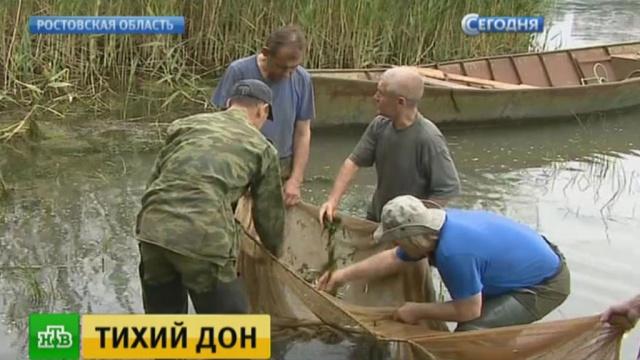 рыбаки на ростовском море