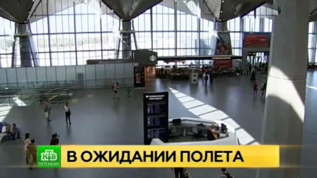 петербуржцы вылететь болгарию