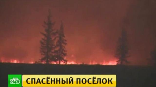 спасатели защитили лесного пожара ямальский поселок