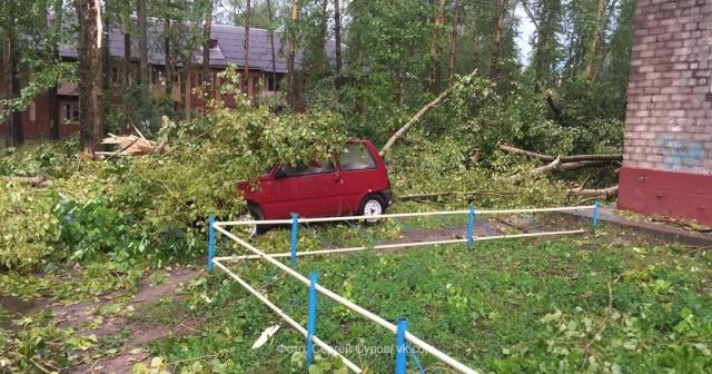 В итоге урагана вПоморье пострадали 5 человек