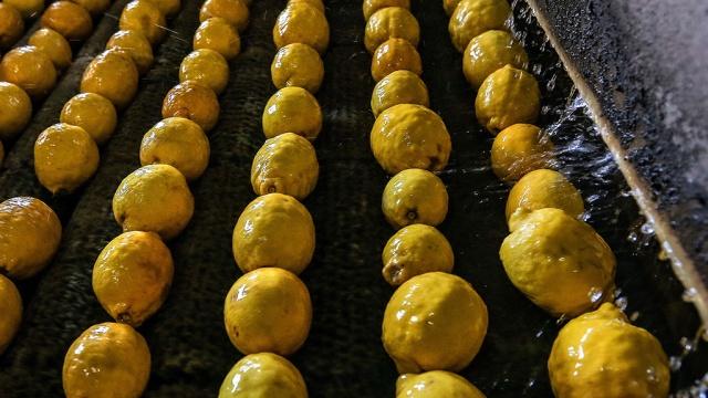 Россия запретила ввоз фруктов и овощей из Египта