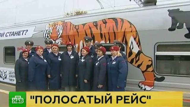 Тигриный поезд отправился из Москвы во Владивосток
