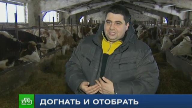 журналисты нтв помогли фермерам защитить хозяйство произвола чиновников