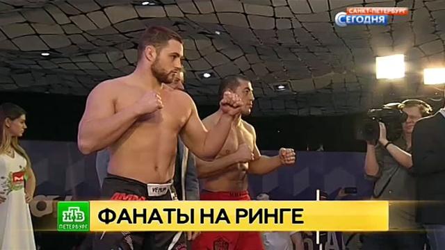На питерском ринге сойдутся непримиримые болельщики ЦСКА и Спартака