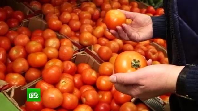 ФТС заподозрила Абхазию в нелегальной поставке в Россию турецких помидоров