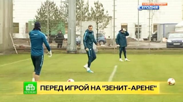 Зенит протестировал газон нового стадиона перед первым матчем на Крестовском острове