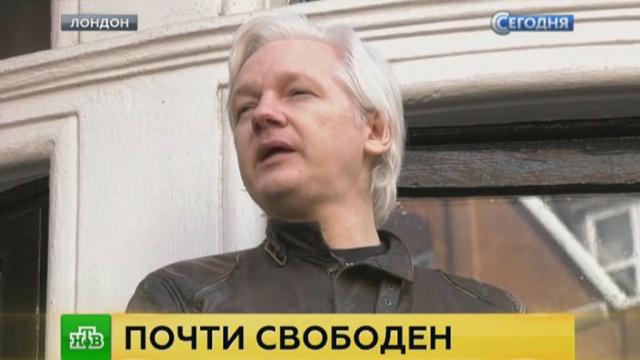 Адвокат Ассанжа прокомментировал решение о прекращении расследования