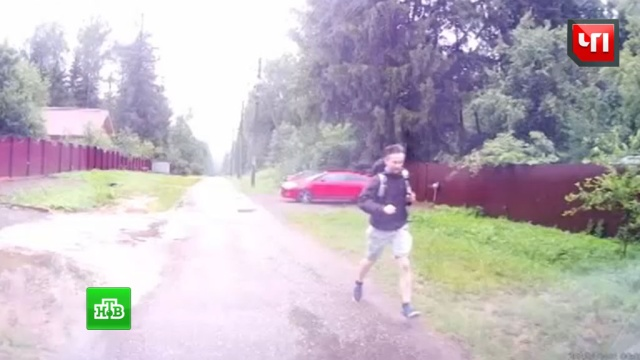 Свидетель убийства подмосковного бизнесмена попал на видео