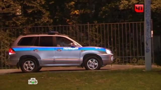 Женщина с грудным младенцем исчезли в лесопарке Петербурга