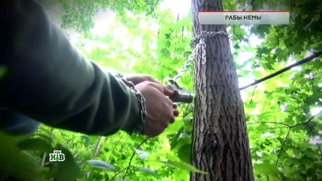 Как в России работает рынок рабов: расследование НТВ
