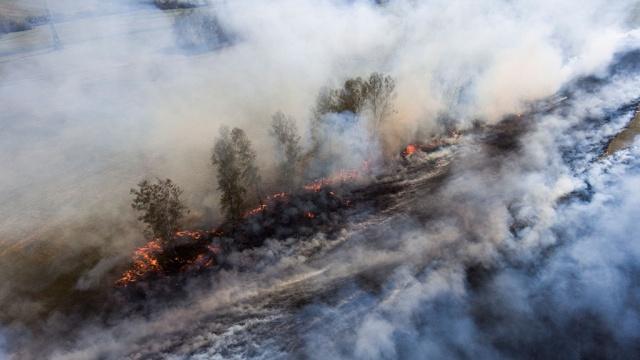 площадь лесных пожаров сибири выросла забайкалье
