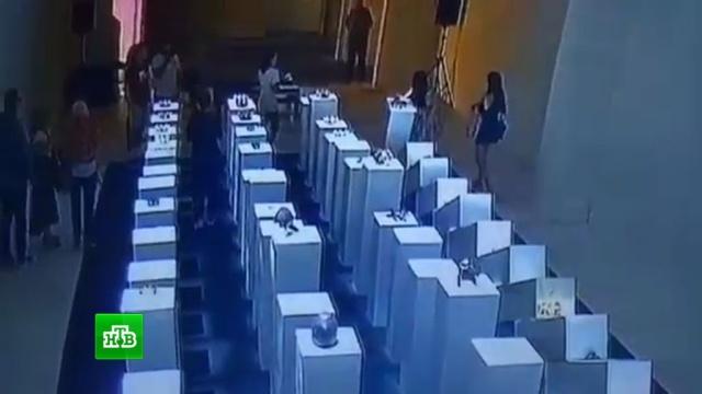 Селфи на 200 тысяч долларов: женщина избежала наказания за разгром выставки