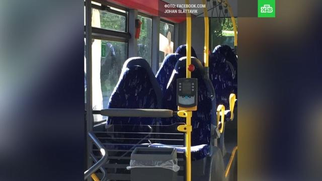 В Норвегии противники мигрантов разглядели в автобусных креслах женщин в хиджабах