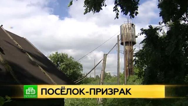 Поселок-призрак под Петербургом живет без воды и дорог