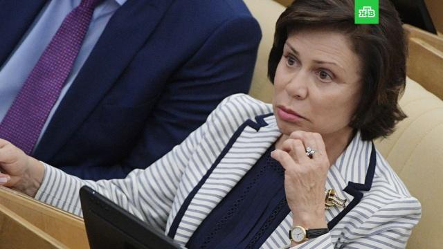 """В Госдуме попросили ФСБ проверить противников """"Матильды"""" на экстремизм"""