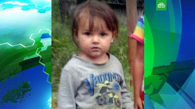 Полиция ЕАО выясняет, принадлежат ли найденные останки пропавшей летом девочке