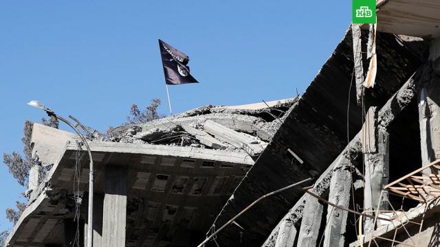 Шойгу: под контролем ИГ в Сирии осталось не более 5% территории