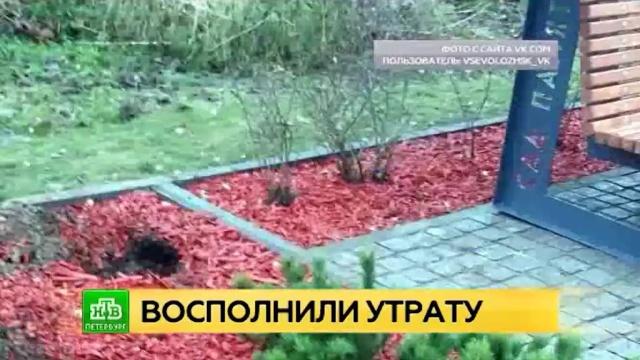 Вандалов в ленинградском Саду памяти будут отслеживать видеокамеры
