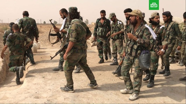 Шойгу сообщил о зачистке разгромленного оплота ИГИЛ в Сирии