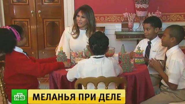 Меланья Трамп нарядила елку в Белом доме