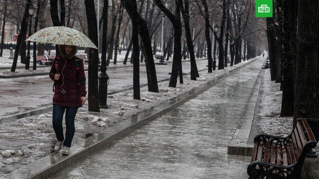 В Гидрометцентре предсказали изменчивую зиму и раннюю весну
