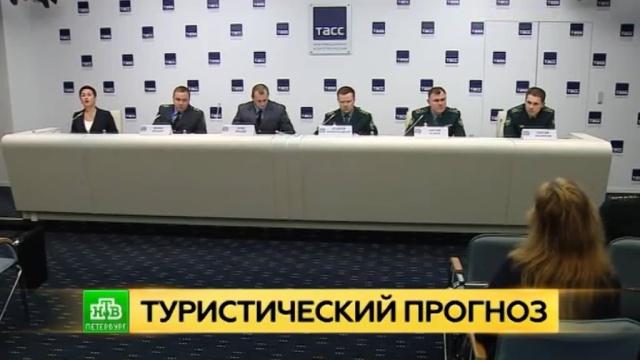 Петербургская таможня рассказала о подготовке к новогоднему ажиотажу на границе