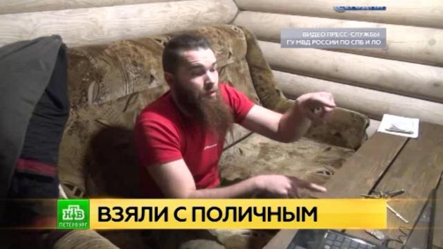 Житель деревни под Петербургом разбил плантацию конопли у себя в доме