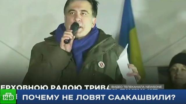 журналисты нтв выяснили главный секрет неуловимости михаила саакашвили
