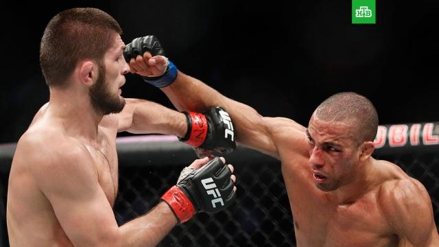 Тренер Макгрегора поздравил россиянина Нурмагомедова с победой на турнире UFC
