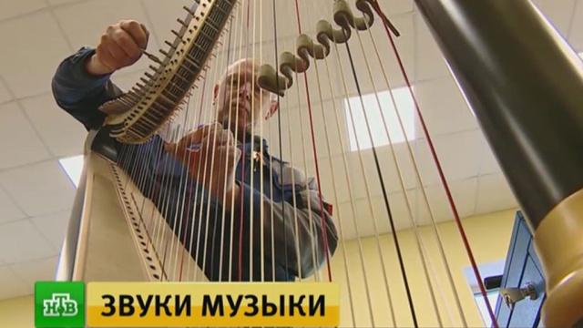 Минпромторг продолжит поддержку производителей музыкальных инструментов