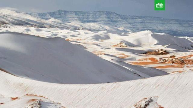 В пустыне Сахара второй год подряд выпал снег: фото