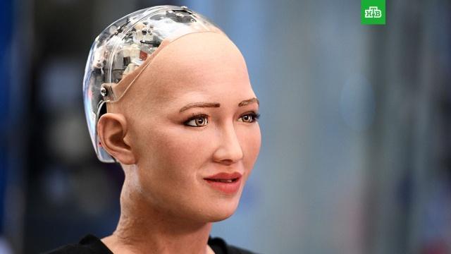 Робот София сломалась после вопроса о коррупции на Украине