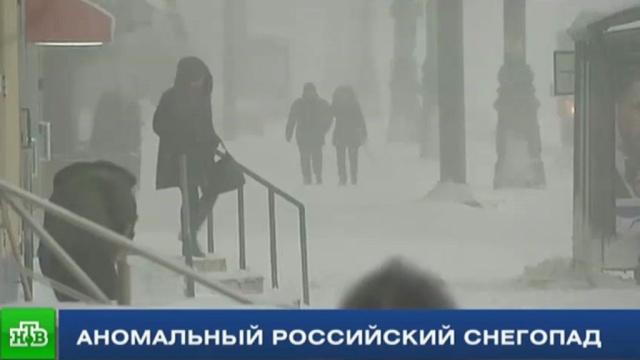 Кто гонит пургу: в Москве оценили последствия аномального снегопада
