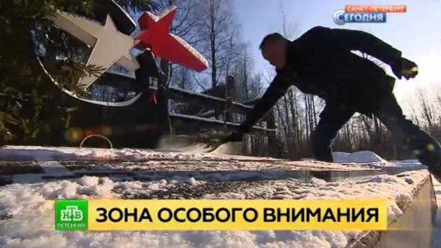 Память без мемориала: почему в Ленобласти нет достойного памятника на Невском пятачке и Синявинских высотах