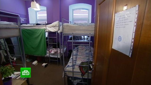 Доля бронирований хостелов в России выросла до 6%