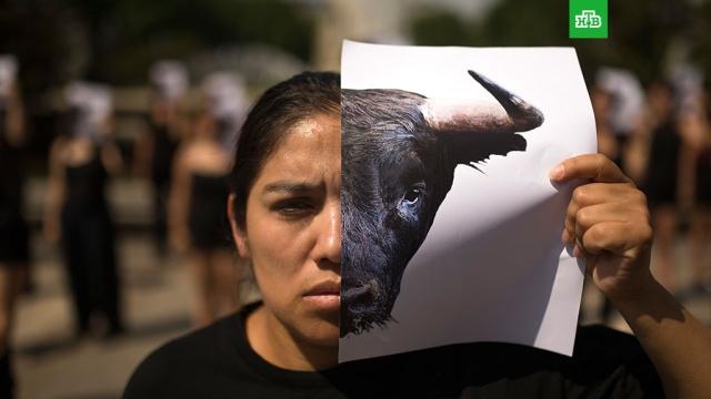 На 8 Марта челябинский зоопарк предложил сравнить женщин с животными